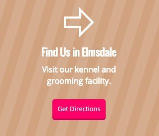 Find Us in Elmsdale - Visit our kennel and grooming facility - Get Directions